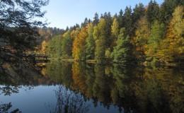 2012 10 20 Herbstwaldwanderung 10