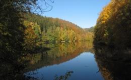 2012 10 20 Herbstwaldwanderung 11