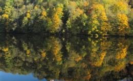 2012 10 20 Herbstwaldwanderung 17