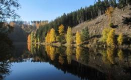 2012 10 20 Herbstwaldwanderung 23