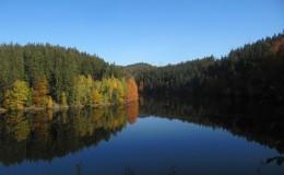 2012 10 20 Herbstwaldwanderung 25