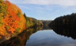 2012 10 20 Herbstwaldwanderung 29