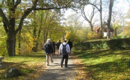 2012 10 20 Herbstwaldwanderung 8